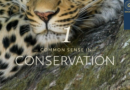 Common Sense in Conservation 1