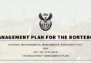 NEMBA  Management Plan for the Bontebok